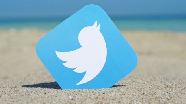 twitter-bird-logo-beach-ss-1920-800x450