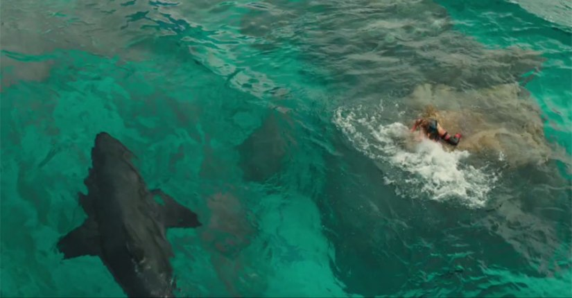 the shallows pic 1