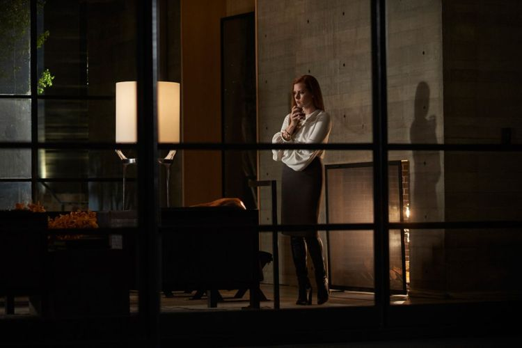 nocturnal-animals-pic-1
