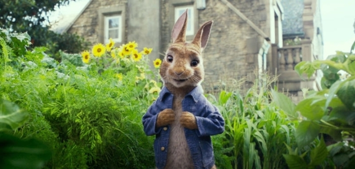 peter rabbit pic